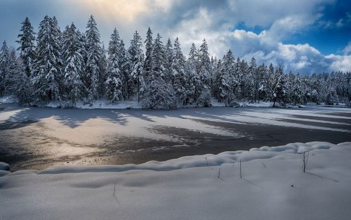 März Winter am Etang de la Gruère II